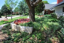 Landscape Mounds Front Yard - landscape design in dallas abilene fort worth plano flower mound