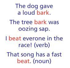 same words different meanings homonyms north grammar
