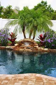 Backyard Trees Landscaping Ideas by Best 25 Tropical Pool Landscaping Ideas Only On Pinterest Pool