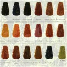 Types Of Hair Colour by Cool Hair Colors Hair Color Types All Hair Color Types American