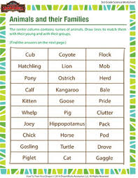animals and their families worksheet free grade 3 science