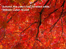 quotes about autumn autumn poetry quotes and season quotes