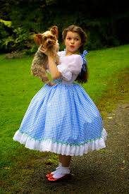 dorothy costume dorothy costume judy garland wizard of oz inspired dress