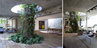 nature inspired living room impressive room nature inspired living ideas ior design ideas
