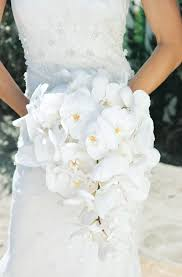 orchid bouquet bouquets photos phalaenopsis orchid bouquet inside weddings