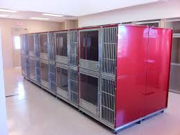 double stack kennel designs for max efficiency in boarding