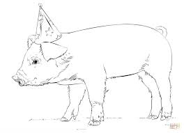 baby pig coloring page free printable coloring pages