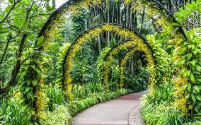 Largest Botanical Garden by Most Beautiful Botanical Gardens Around The World Travel Leisure