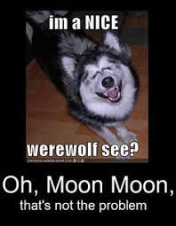 Moon Moon Meme - 14 best moon moon memes images on pinterest moon moon memes funny