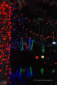 Zoo Lights Columbus Zoo by The Columbus Zoo Footsteps Travel
