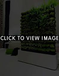indoor vertical herb garden gardens and landscapings decoration