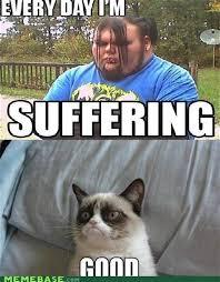 Angry Cat Meme Good - th id oip dkjfknuhd iubfujahgxyghajg