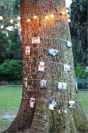 Outdoor Backyard Wedding Ideas Best 25 Tree Decorations Wedding Ideas On Pinterest Vintage
