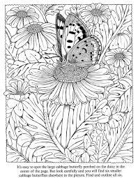 523 butterflies color images coloring books