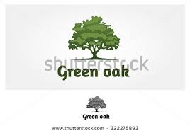 trees stock images royalty free images vectors