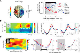 beyond the status quo a role for beta oscillations in endogenous