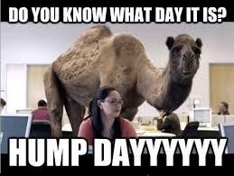 Funny Meme Of The Day - hump dayyyyyyyy funny meme funny memes