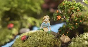 fairy garden plants which are best fertile fibre