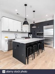 white cabinets with black countertops and appliances a modern kitchen with black and white cabinets stainless