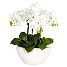 flowers arrangement nearly 4804 phalaenopsis silk flower