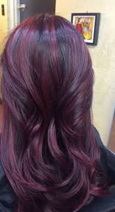 brown plum hair color everything you need to know about plum hair dailybeautyhack