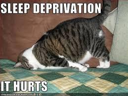 Lack Of Sleep Meme - sleep deprivation is making me stoopid holliday s inner workings