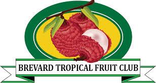 fruit club brevard tropical fruit club home