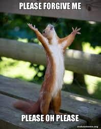 Forgive Me Meme - please forgive me please oh please happy squirrel make a meme