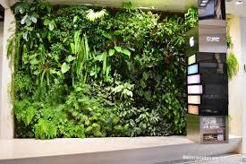 vertical garden indoor singapore 17 best images about vertical
