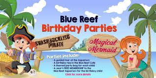 blue reef aquarium newquay buy discounted tickets online