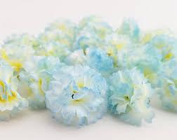 blue carnations carnations etsy