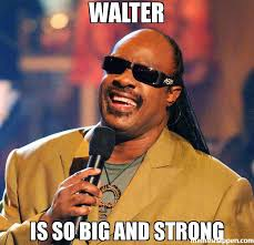 Walter Meme - walter is so big and strong meme stevie wonder 36451 page 194