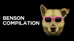 Benson Dog Meme - benson compilation funhaus youtube