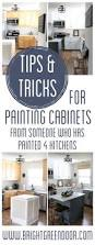 Kitchen Cabinet Paint Best 25 Painting Kitchen Cabinets Ideas On Pinterest Painted