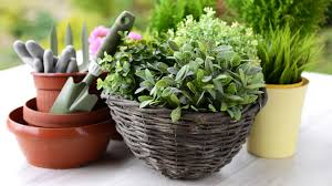 diy indoor planter home design ideas