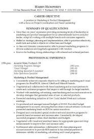 Career Summary Resume Example Examples Of Resumes Professional Summary References Resume