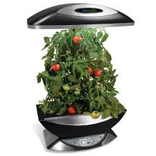 indoor kitchen garden indoor kitchen garden josaelcom 17 best