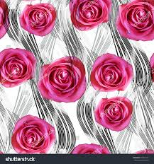 seamless pattern flowers lines roses on stock illustration