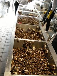 comment cuisiner des escargots les escargots a la bourguignonne cuisine