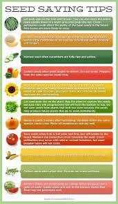gardening tips 536 best gardening tips tricks u0026 clever ideas images on pinterest
