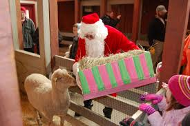 holiday winter happenings at the oklahoma city zoo kfor com