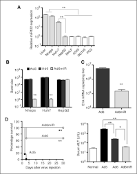 microrna regulation of oncolytic adenovirus 6 for selective