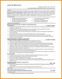 Sample Executive Director Resume Director Resume Examples Manager Resume Profile Executive Summary