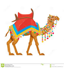 beautiful decorated camel stock vector image 91111272