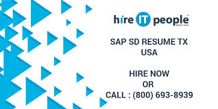 Sample Resume For Sap Sd Consultant by Sap Sd Resume Tx Hire It People We Get It Done
