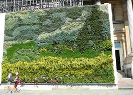 287 best vertical gardens green roofs images on pinterest