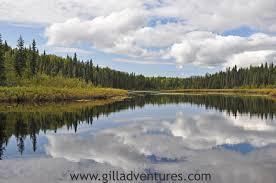 Alaska lakes images Image gallery of fish lakes creek alaska jpg