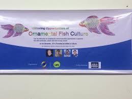 ornamental aquaculture club kerala awf aquaculture without