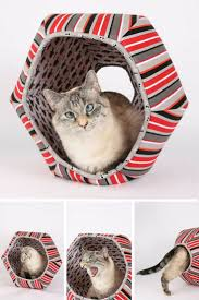 26 best ultimate cat accoutrements images on pinterest cat stuff