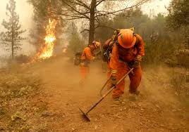 California Wildfire Ranking by Investigation Sought On Using Violent Inmates To Fight Fires In